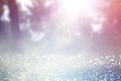 Abstract photo of light burst among trees and glitter bokeh lights. image is blurred and filtered . Stock Images