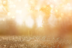 Abstract photo of light burst among trees and glitter bokeh lights. image is blurred and filtered . Stock Image