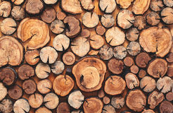 Abstract photo of a pile of natural wooden logs background Stock Image