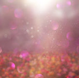 Abstract photo of wild flower field and bright bokeh lights Stock Photography