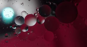 Abstract photography drops of oil on the water. Fantastic shapes of colored circles on a colorful background. Wallpaper Royalty Free Stock Photo