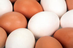 Abstract picture from eggs Stock Photo