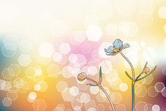 Abstract picture with flowers and bokeh Royalty Free Stock Images