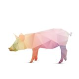 Abstract pig Royalty Free Stock Photos