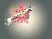 Abstract pigeon illustration Royalty Free Stock Photography