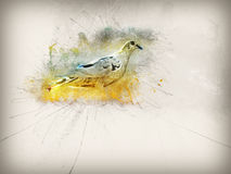 Abstract pigeon illustration Stock Photo