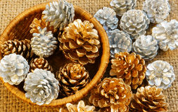 Abstract pine cone, Xmas season Stock Images