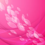 Abstract pink background with falling petals Stock Photos