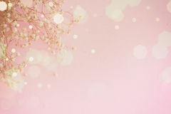 Abstract pink background. Abstract background - small white flowers on pink background Royalty Free Stock Photos