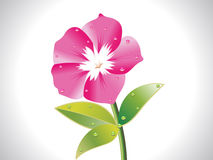 Abstract pink flower Stock Photo