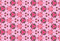 Abstract pink flower pattern wallpaper. Abstract pink flower pink  color pattern background Stock Photos