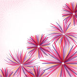 Abstract pink flowers Stock Photos