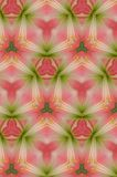 Abstract Pink and Green Background Stock Image
