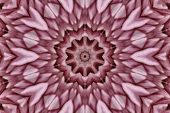 Abstract Pink Kaleidoscope. Symmetrical patterns Royalty Free Stock Images