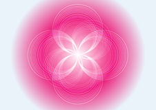 Abstract pink light multi circle  background. Abstract Vector pink light multi circle  background Royalty Free Stock Photo