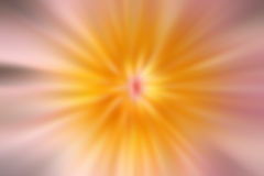 Abstract pink and yellow blurred line for background Stock Images