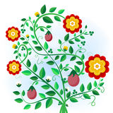 Abstract plant with flowers, buds and fruits Stock Images