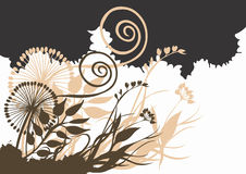 Abstract plants. Illustration of abstract plants and decorative patterns Royalty Free Stock Image