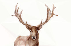 Abstract polygonal deer Royalty Free Stock Images