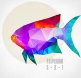 Abstract polygonal fish Stock Photo
