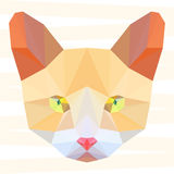 Abstract polygonal geometric cat portrait background for use in design Stock Images