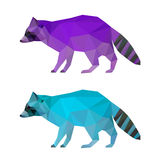 Abstract polygonal geometric triangle bright purple and blue colored raccoon set isolated on white background for use in design Royalty Free Stock Photo
