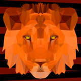 Abstract polygonal geometric triangle lion painted in bright imaginary colors. Abstract lion. Polygonal geometric triangle illustration painted in bright Stock Photos