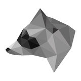 Abstract polygonal geometric triangle raccoon head isolated on white background for use in design Royalty Free Stock Photography