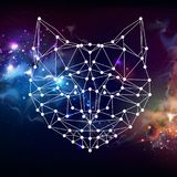 Abstract polygonal tirangle animal cat on open space background. Royalty Free Stock Image