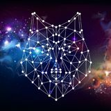 Abstract polygonal tirangle animal wolf on open space background. Royalty Free Stock Image