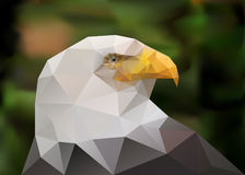 Abstract polygonal triangle bald eagle. Geometric low poly illustration. Polygonal poster Royalty Free Stock Image