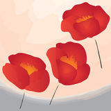 Abstract poppies on watercolor background Royalty Free Stock Image