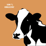 Abstract Portrait Of Big Cow. Royalty Free Stock Photos