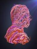 Abstract portret Doorwevende roze krommen het 3d teruggeven Royalty-vrije Stock Afbeeldingen