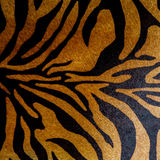 Abstract print animal seamless pattern. Zebra, tiger stripes. Striped repeating background texture. Fabric design Stock Photography