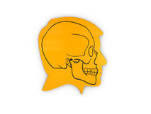 Abstract Profile a human head and skull, 3d Illustration  White Stock Images