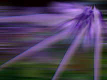 Abstract Purple Light Royalty Free Stock Photo