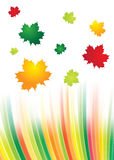 Abstract rainbow background Royalty Free Stock Image