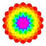 Abstract rainbow colored mandala, Flower isolated on white background, Multicolor bloom, Colorful esoteric petal mandala Stock Photo