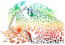 Abstract rainbow leopard on a white background. Stock Image