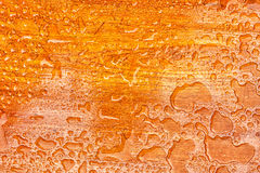 Abstract raindrops pattern on wooden board.  royalty free stock image