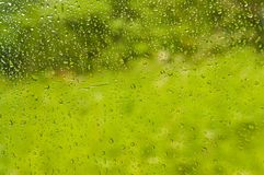 Rainfall on the train window with green background. Abstract  Rainfall on the train window with plant background blur Stock Images