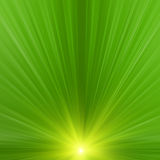 Abstract rays Royalty Free Stock Photo