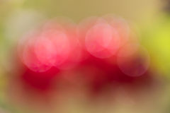 Free Abstract Red And Green Circular Bokeh Background Royalty Free Stock Image - 56035486