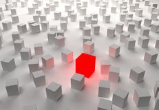 Abstract red cube on white cubic background 3D rendering.  Stock Photos