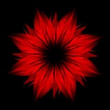 Abstract red flower on black background Stock Photography