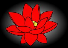 Abstract red flower with black background -2. Abstract red flower and black background design royalty free illustration