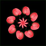 Abstract red flowers in a circle Royalty Free Stock Images