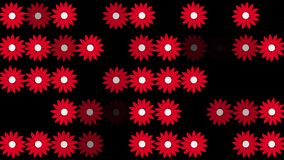 Abstract red flowers in rows on black stock video footage