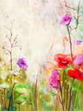 Abstract red flowers watercolor paintings Royalty Free Stock Images